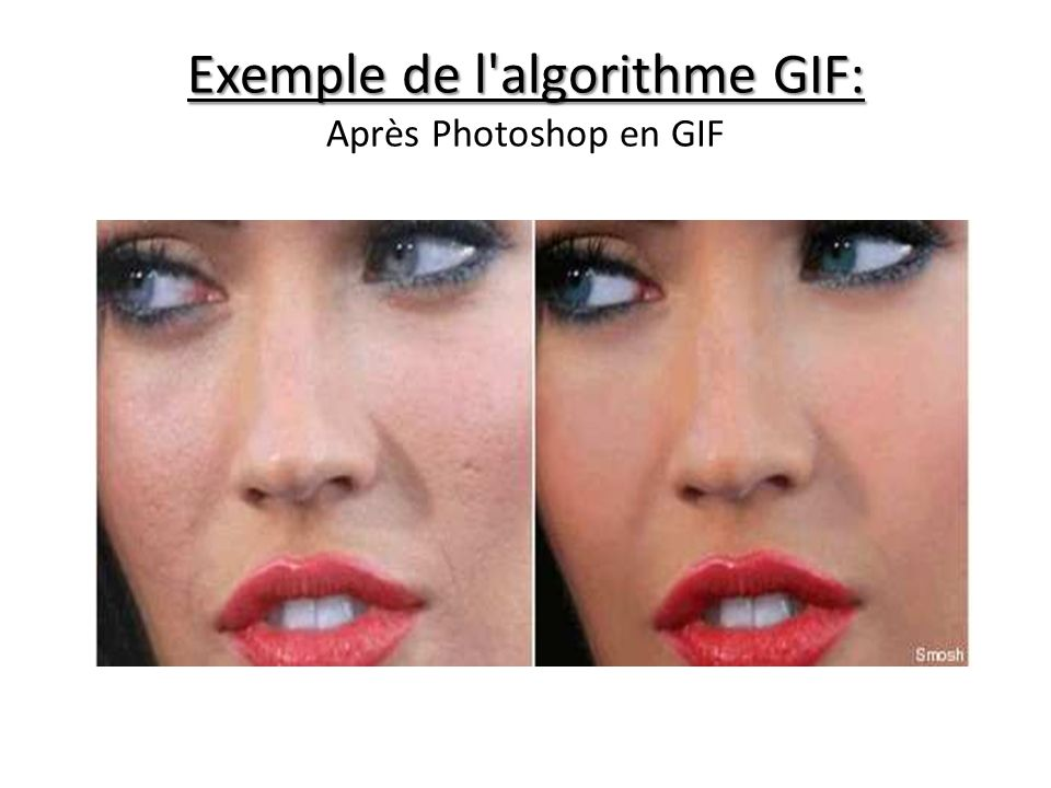 Exemple de l algorithme GIF: Exemple de l algorithme GIF: Après Photoshop en GIF