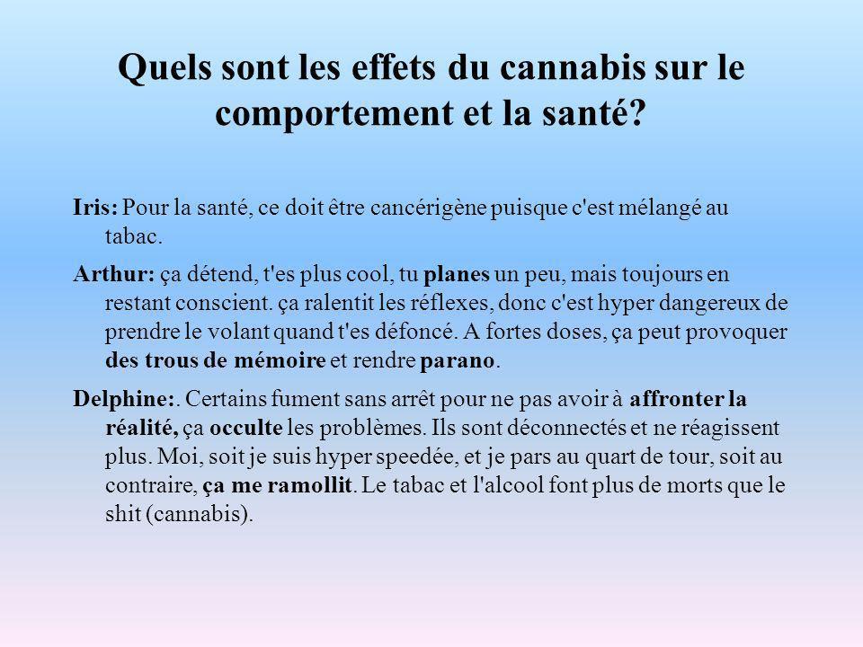 Quels sont les effets du cannabis sur le comportement et la santé.