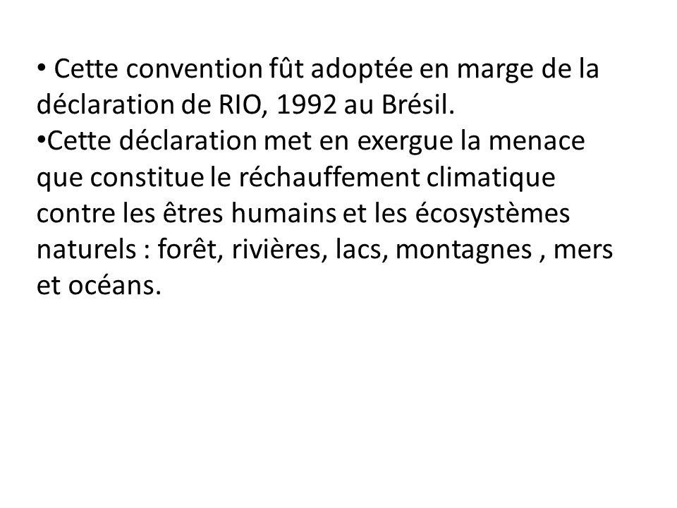 Cette convention fût adoptée en marge de la déclaration de RIO, 1992 au Brésil.