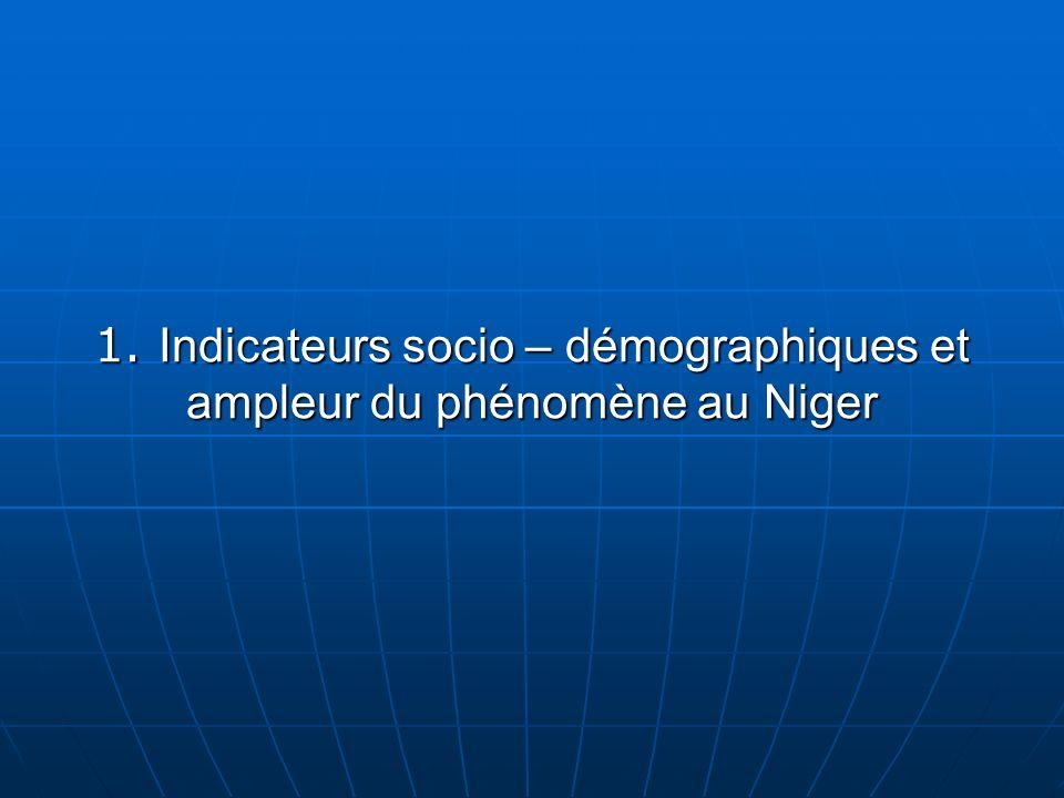 1. Indicateurs socio – démographiques et ampleur du phénomène au Niger