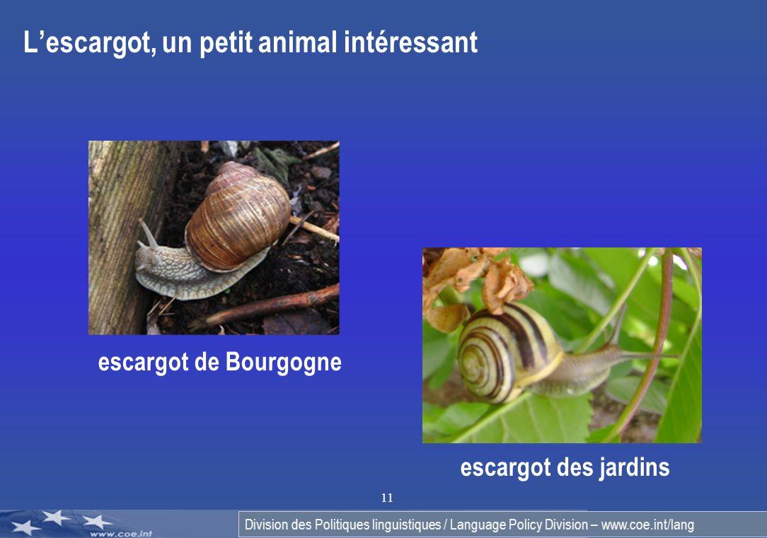 Division des Politiques linguistiques / Language Policy Division – www.coe.int/lang 11 Lescargot, un petit animal intéressant escargot de Bourgogne es