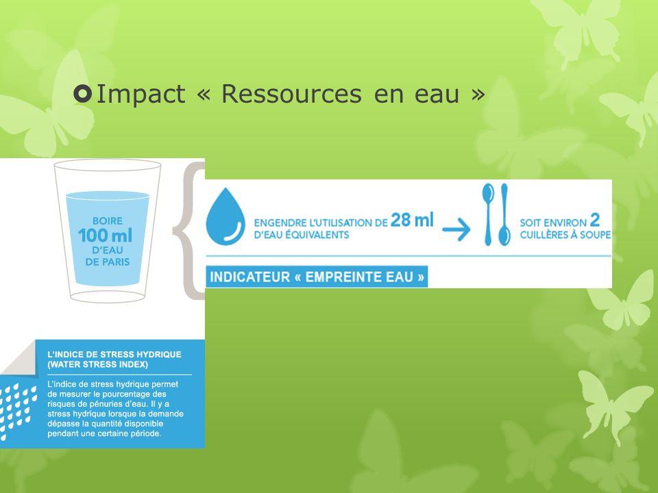 Impact « Ressources en eau »