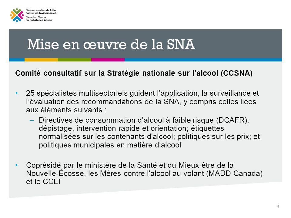 Mise en œuvre de la SNA Comité consultatif sur la Stratégie nationale sur lalcool (CCSNA) 25 spécialistes multisectoriels guident lapplication, la sur