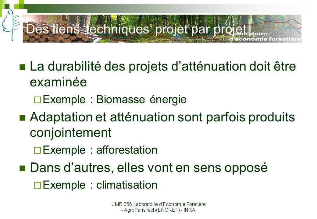Des liens techniques projet par projet La durabilité des projets datténuation doit être examinée Exemple : Biomasse énergie Adaptation et atténuation