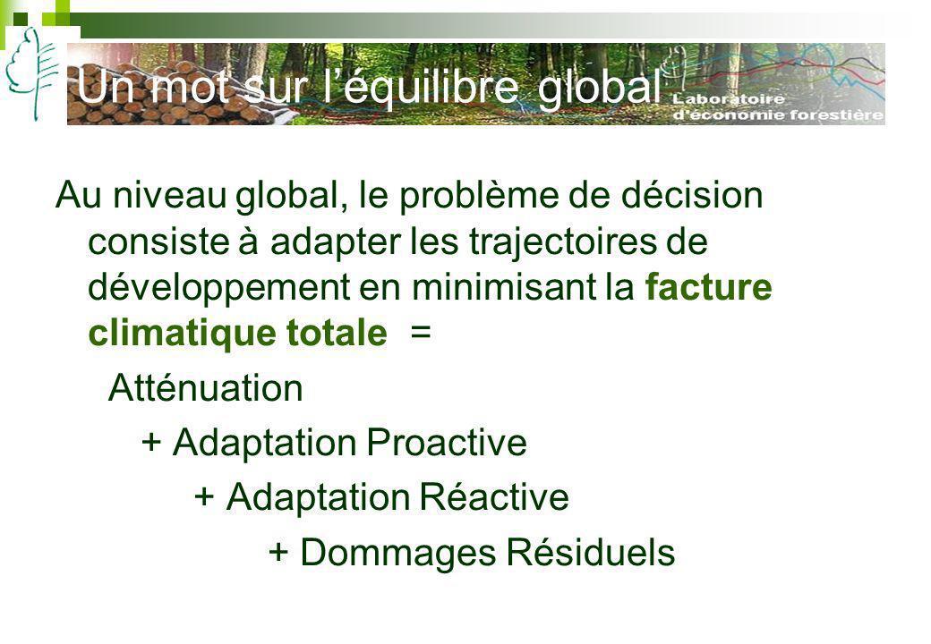 Un mot sur léquilibre global Au niveau global, le problème de décision consiste à adapter les trajectoires de développement en minimisant la facture c