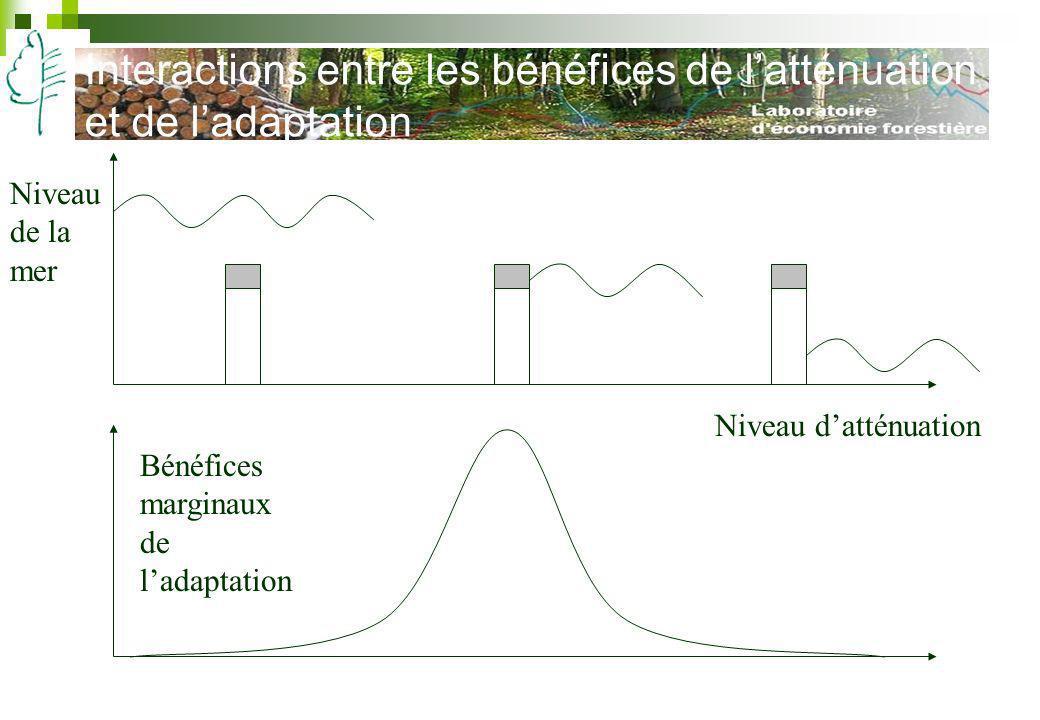 Interactions entre les bénéfices de latténuation et de ladaptation Niveau datténuation Bénéfices marginaux de ladaptation Niveau de la mer