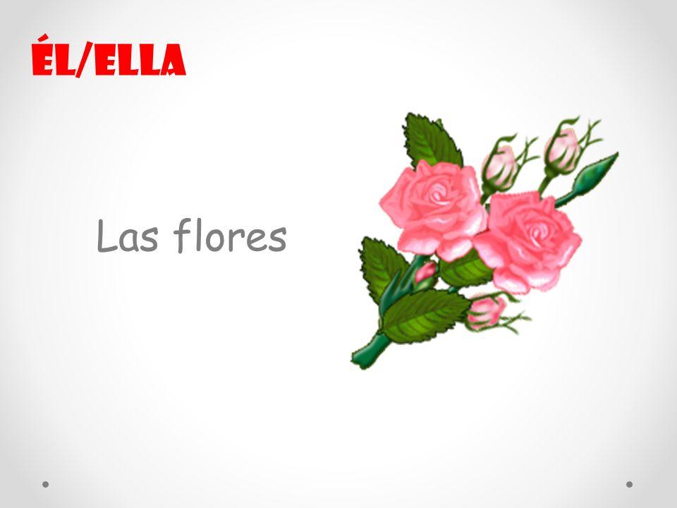 Las flores Él/ella