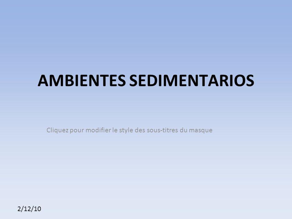 Cliquez pour modifier le style des sous-titres du masque 2/12/10 AMBIENTES SEDIMENTARIOS