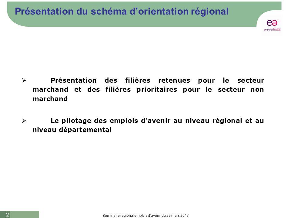 2 Séminaire régional emplois davenir du 29 mars 2013 Présentation du schéma dorientation régional Présentation des filières retenues pour le secteur marchand et des filières prioritaires pour le secteur non marchand Le pilotage des emplois davenir au niveau régional et au niveau départemental