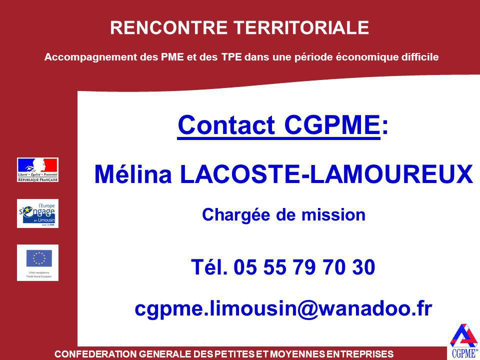 RENCONTRE TERRITORIALE CONFEDERATION GENERALE DES PETITES ET MOYENNES ENTREPRISES Contact CGPME: Mélina LACOSTE-LAMOUREUX Chargée de mission Tél. 05 5