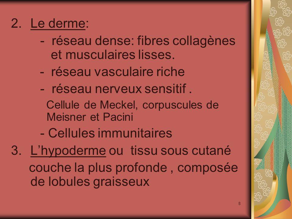 19 Les différentes sensations : La pression La température La douleur La rugosité, la douceur, la consistance, la douleur ….