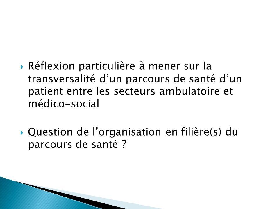 Réflexion particulière à mener sur la transversalité dun parcours de santé dun patient entre les secteurs ambulatoire et médico-social Question de lorganisation en filière(s) du parcours de santé ?