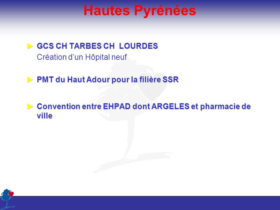 Hautes Pyrénées GCS CH TARBES CH LOURDESGCS CH TARBES CH LOURDES Création dun Hôpital neuf PMT du Haut Adour pour la filière SSRPMT du Haut Adour pour