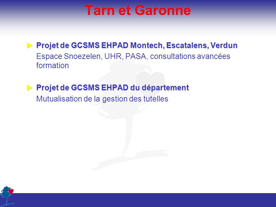 Tarn et Garonne Projet de GCSMS EHPAD Montech, Escatalens, VerdunProjet de GCSMS EHPAD Montech, Escatalens, Verdun Espace Snoezelen, UHR, PASA, consul