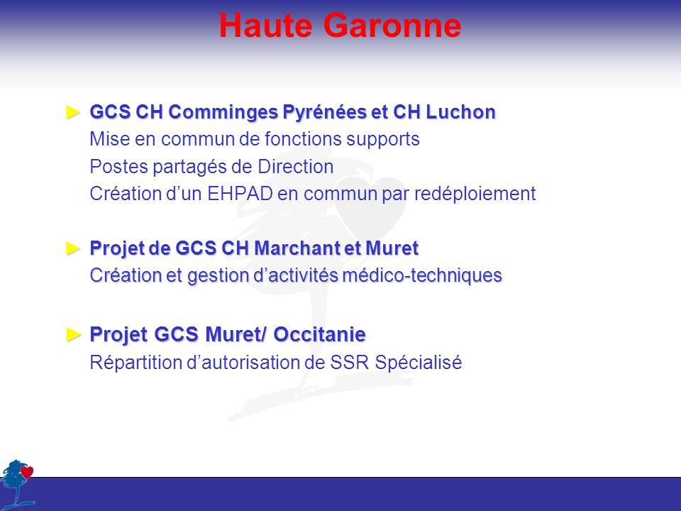Haute Garonne GCS CH Comminges Pyrénées et CH LuchonGCS CH Comminges Pyrénées et CH Luchon Mise en commun de fonctions supports Postes partagés de Dir