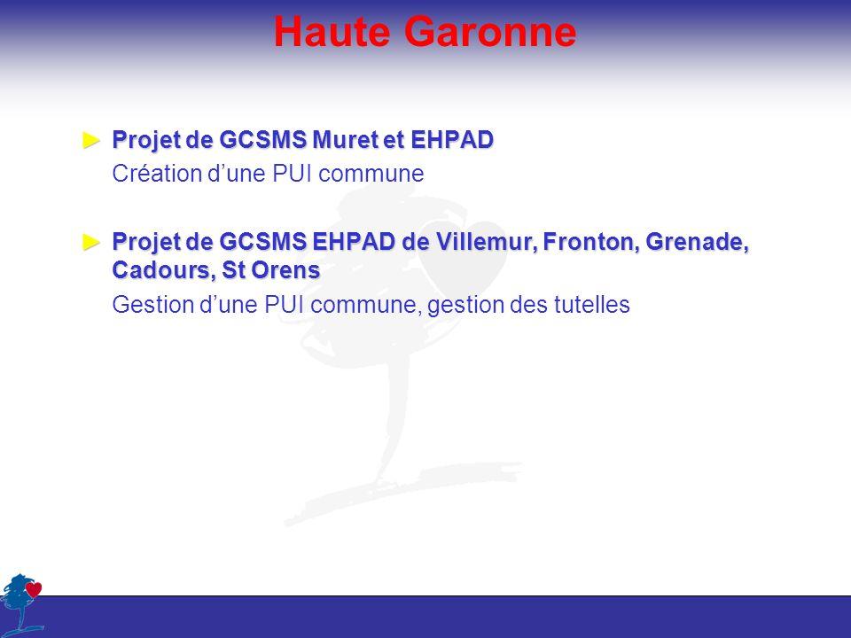 Haute Garonne Projet de GCSMS Muret et EHPADProjet de GCSMS Muret et EHPAD Création dune PUI commune Projet de GCSMS EHPAD de Villemur, Fronton, Grena