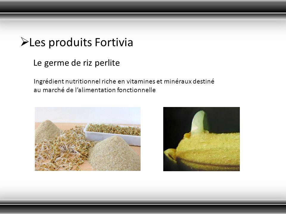 Les produits Fortivia Le germe de riz perlite Ingrédient nutritionnel riche en vitamines et minéraux destiné au marché de lalimentation fonctionnelle