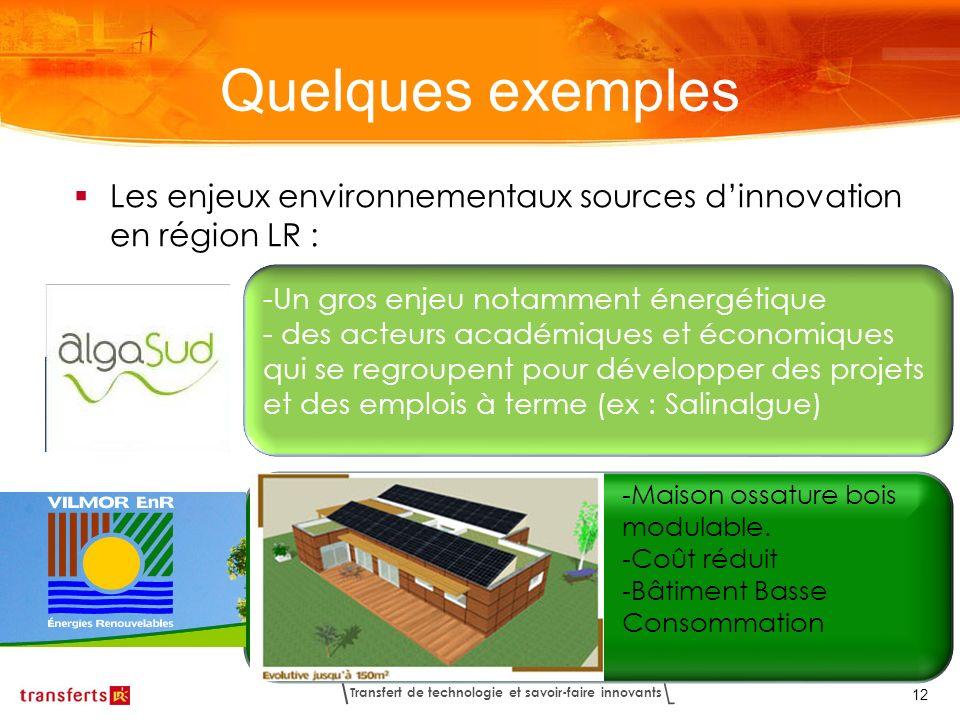 Transfert de technologie et savoir-faire innovants 12 Les enjeux environnementaux sources dinnovation en région LR : Quelques exemples -Un gros enjeu