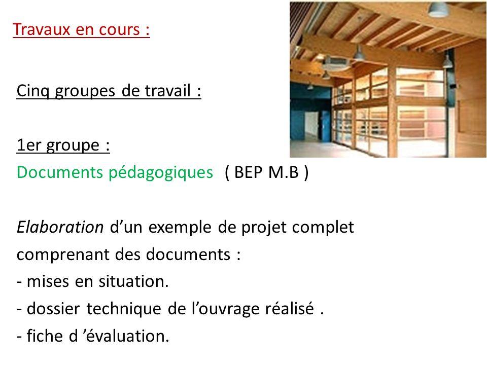 Travaux en cours : Cinq groupes de travail : 1er groupe : Documents pédagogiques ( BEP M.B ) Elaboration dun exemple de projet complet comprenant des
