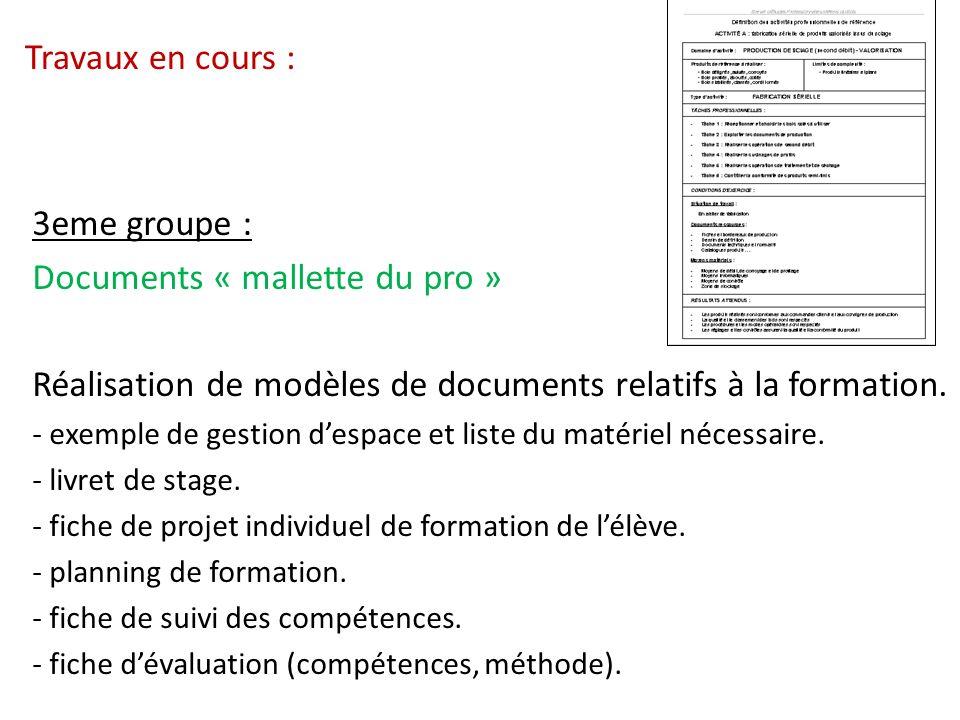 Travaux en cours : 3eme groupe : Documents « mallette du pro » Réalisation de modèles de documents relatifs à la formation. - exemple de gestion despa