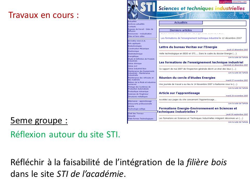 Travaux en cours : 5eme groupe : Réflexion autour du site STI. Réfléchir à la faisabilité de lintégration de la filière bois dans le site STI de lacad