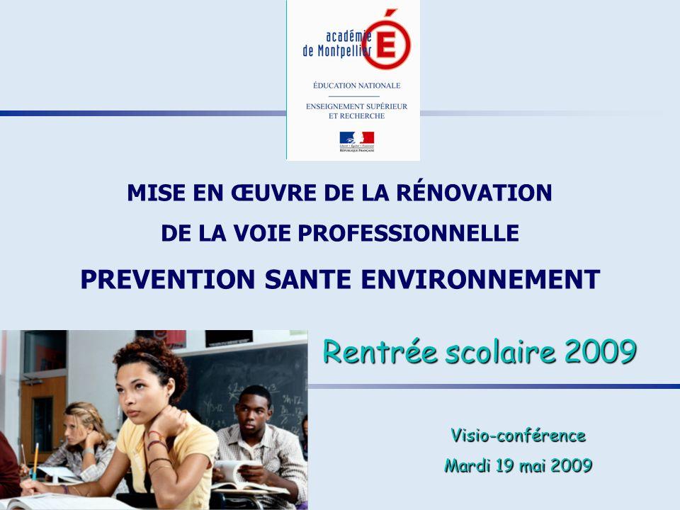 Sommaire MISE EN ŒUVRE DE LA RÉNOVATION DE LA VOIE PROFESSIONNELLE - P.S.E.