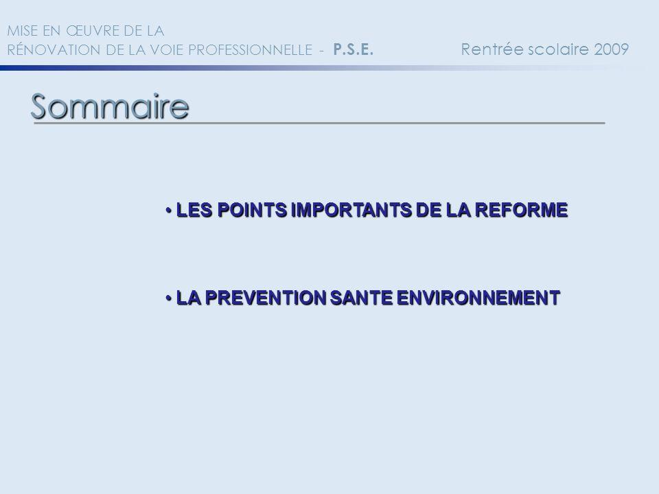 Sommaire MISE EN ŒUVRE DE LA RÉNOVATION DE LA VOIE PROFESSIONNELLE - P.S.E. Rentrée scolaire 2009 LES POINTS IMPORTANTS DE LA REFORME LES POINTS IMPOR