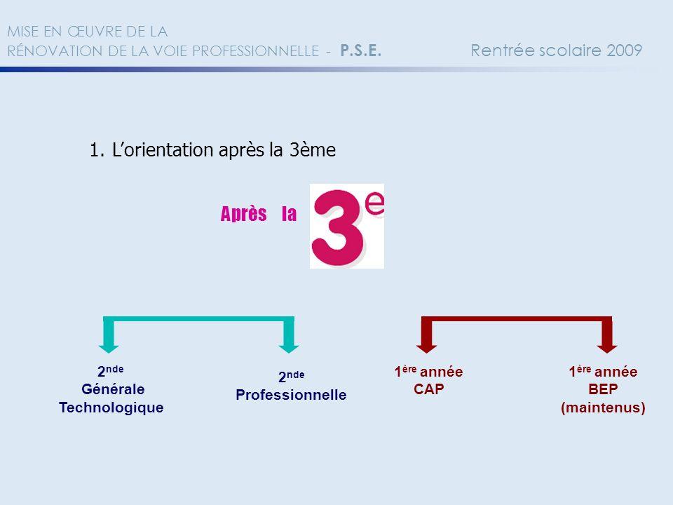 2.Une nouvelle organisation de la voie professionnelle A - Un cursus de référence… 2 nd Pro.