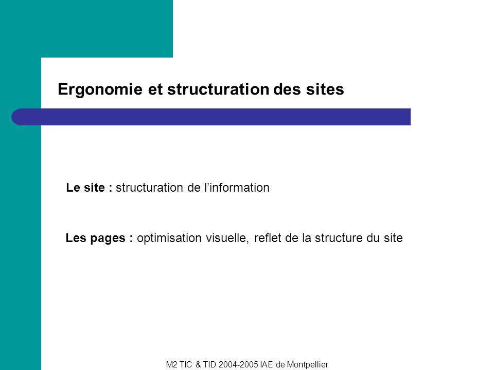 M2 TIC & TID 2004-2005 IAE de Montpellier Ergonomie et structuration des sites Le site : structuration de linformation Les pages : optimisation visuel
