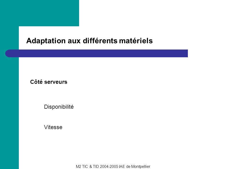 M2 TIC & TID 2004-2005 IAE de Montpellier Adaptation aux différents matériels Côté serveurs Disponibilité Vitesse