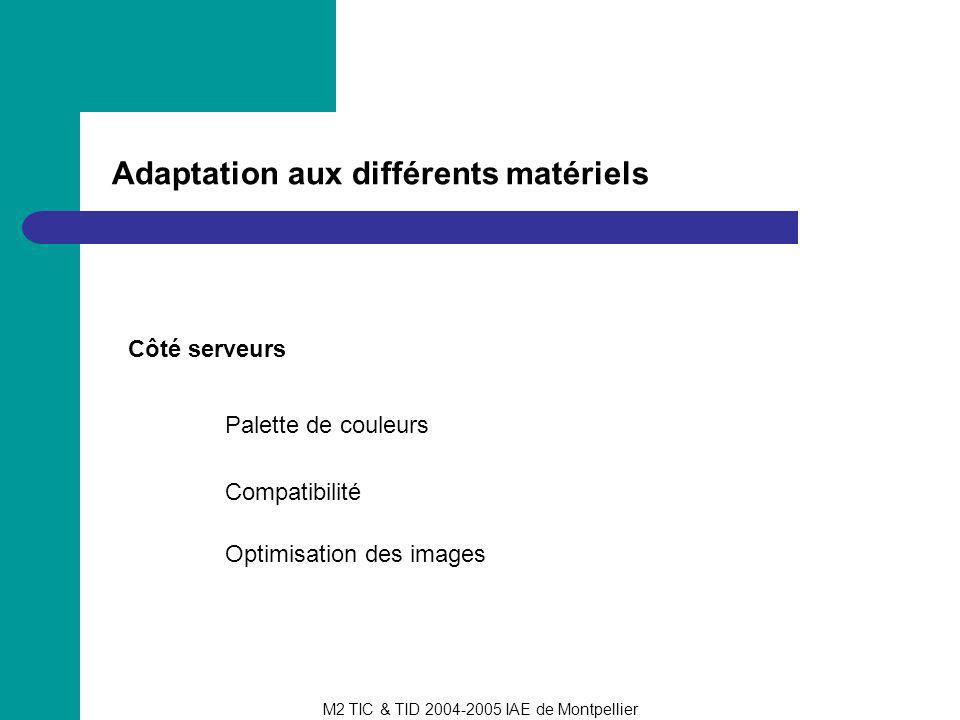 M2 TIC & TID 2004-2005 IAE de Montpellier Adaptation aux différents matériels Côté serveurs Palette de couleurs Compatibilité Optimisation des images
