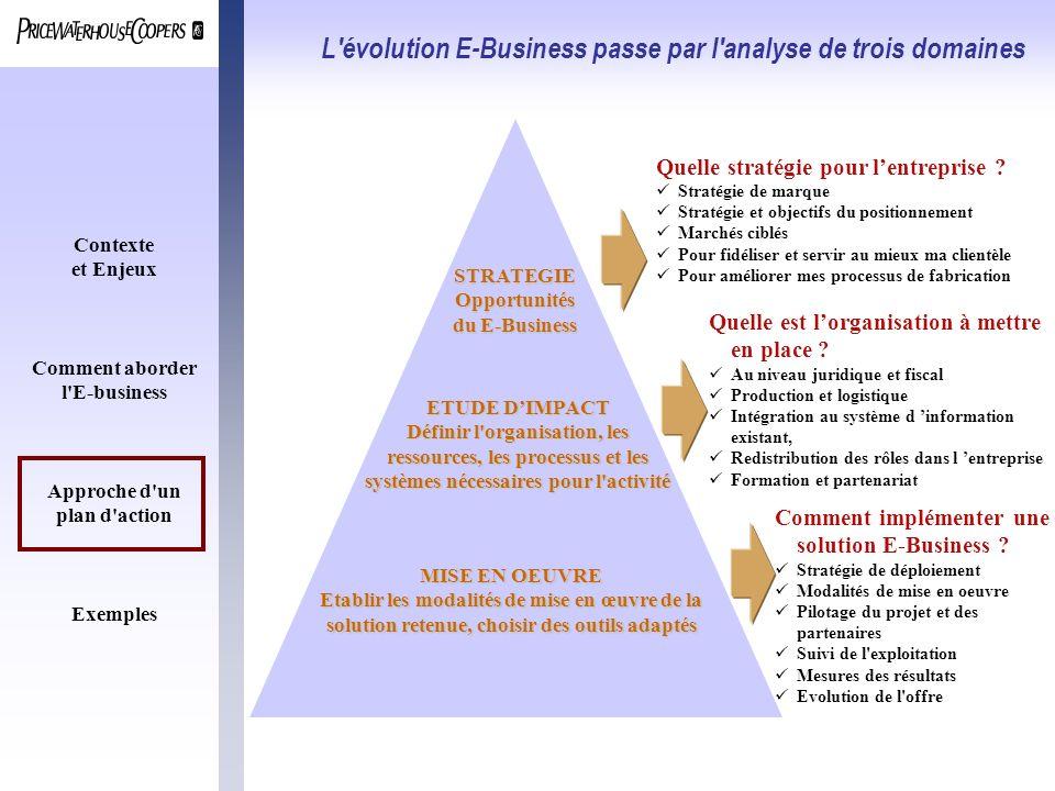 Contexte et Enjeux Comment aborder l'E-business Approche d'un plan d'action Exemples L'évolution E-Business passe par l'analyse de trois domaines Quel