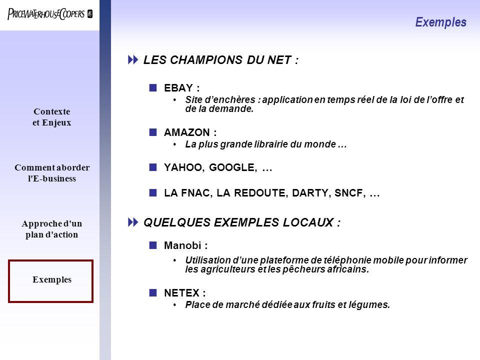 Contexte et Enjeux Comment aborder l'E-business Approche d'un plan d'action Exemples LES CHAMPIONS DU NET : nEBAY : Site denchères : application en te