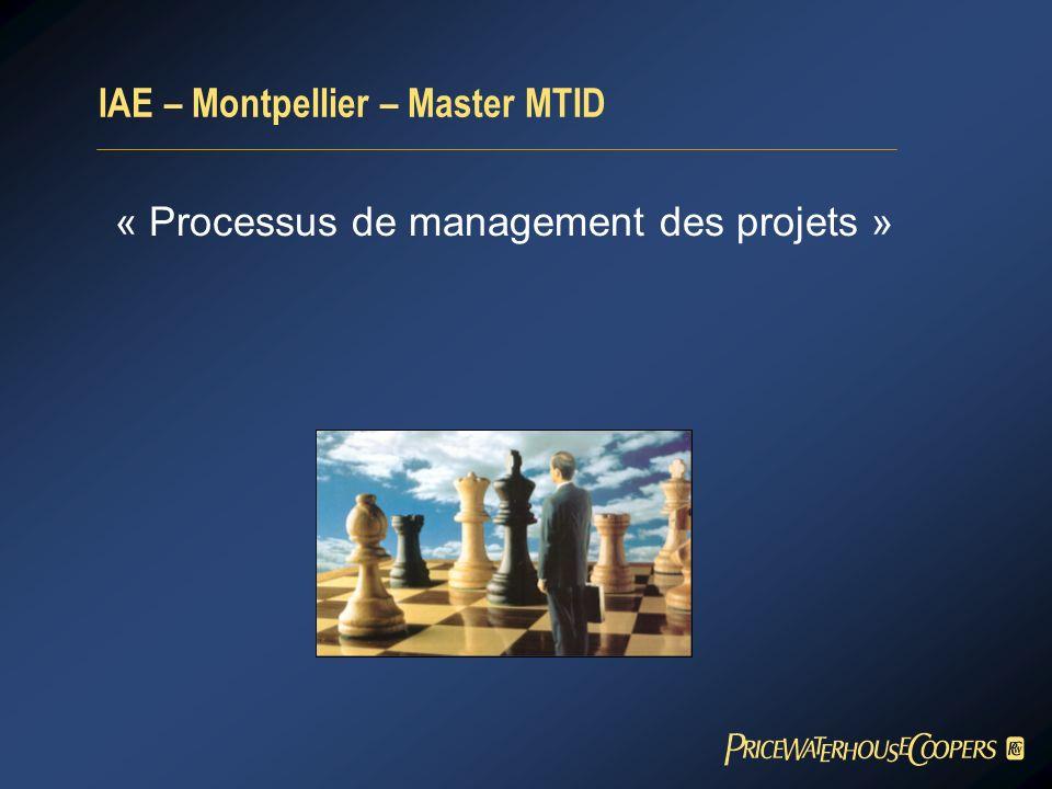 IAE – Montpellier – Master MTID « Processus de management des projets »