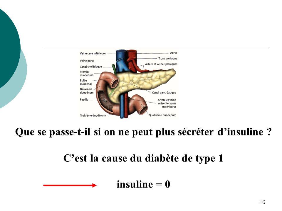 16 Que se passe-t-il si on ne peut plus sécréter dinsuline ? Cest la cause du diabète de type 1 insuline = 0