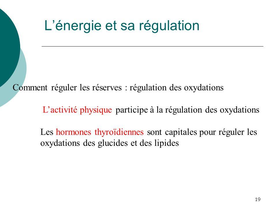 19 Lénergie et sa régulation Comment réguler les réserves : régulation des oxydations Lactivité physique participe à la régulation des oxydations Les