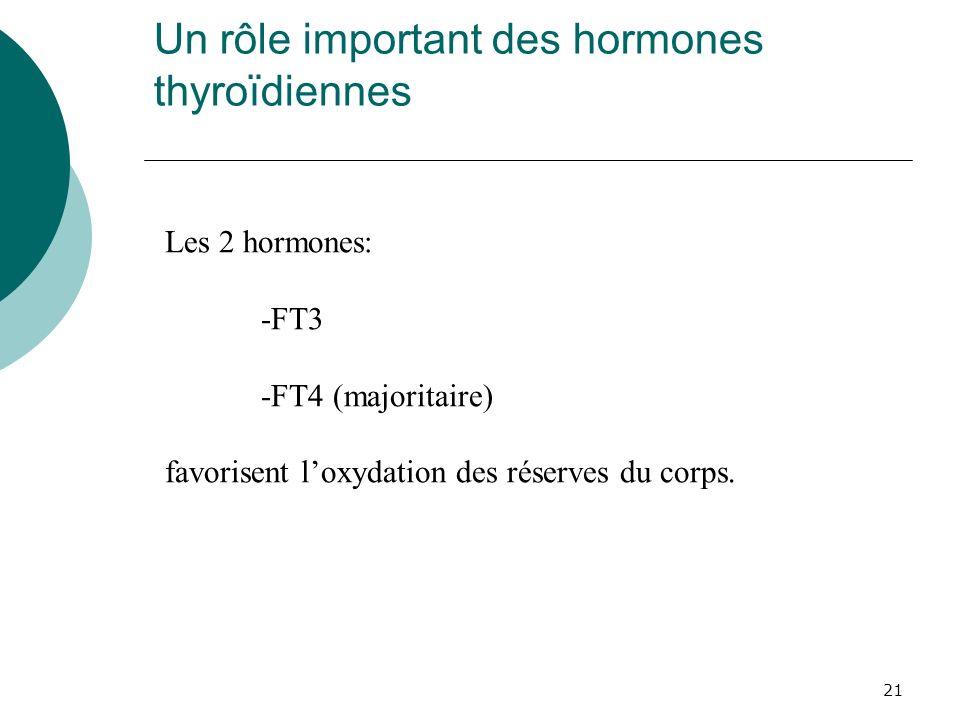 21 Un rôle important des hormones thyroïdiennes Les 2 hormones: -FT3 -FT4 (majoritaire) favorisent loxydation des réserves du corps.