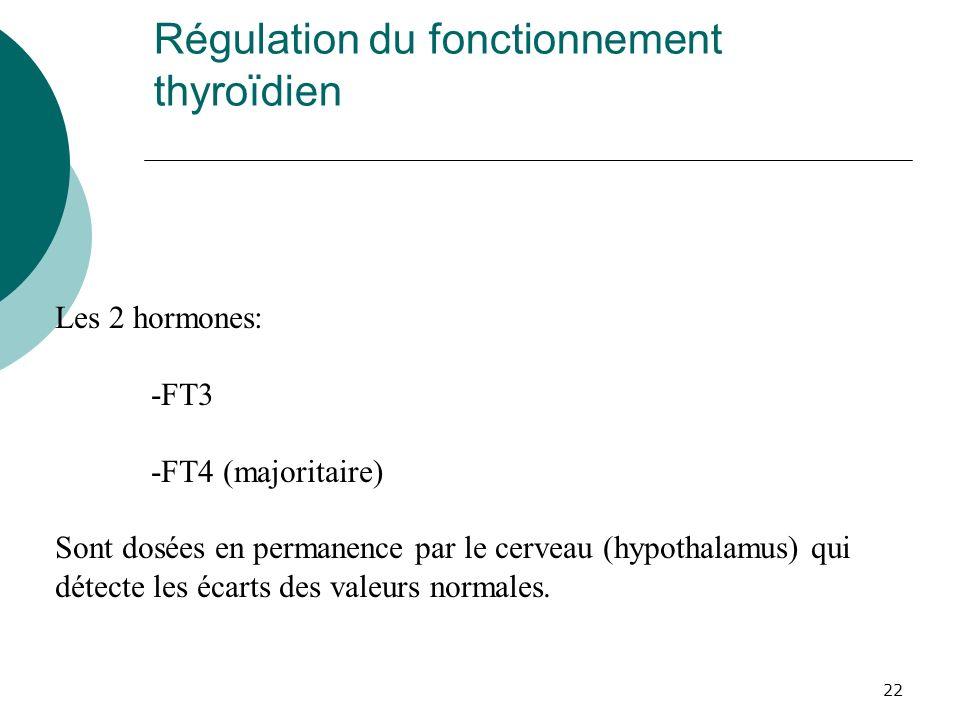 22 Régulation du fonctionnement thyroïdien Les 2 hormones: -FT3 -FT4 (majoritaire) Sont dosées en permanence par le cerveau (hypothalamus) qui détecte