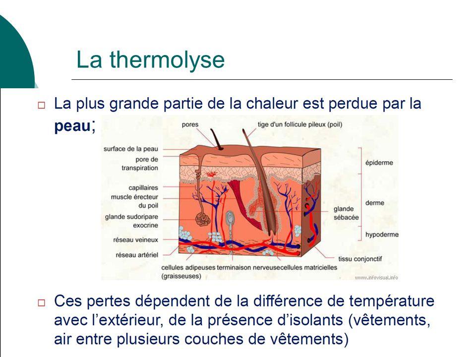 29 La thermolyse