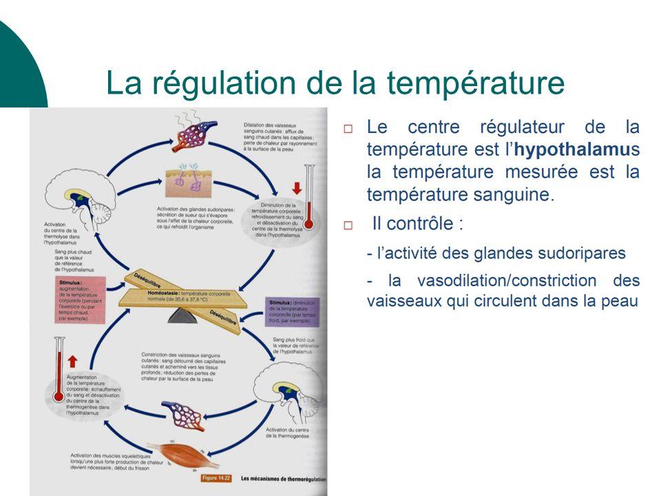 30 La régulation de la température
