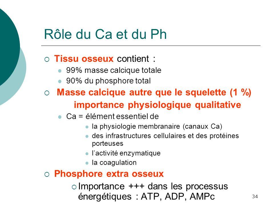 34 Rôle du Ca et du Ph Tissu osseux contient : 99% masse calcique totale 90% du phosphore total Masse calcique autre que le squelette (1 %) importance