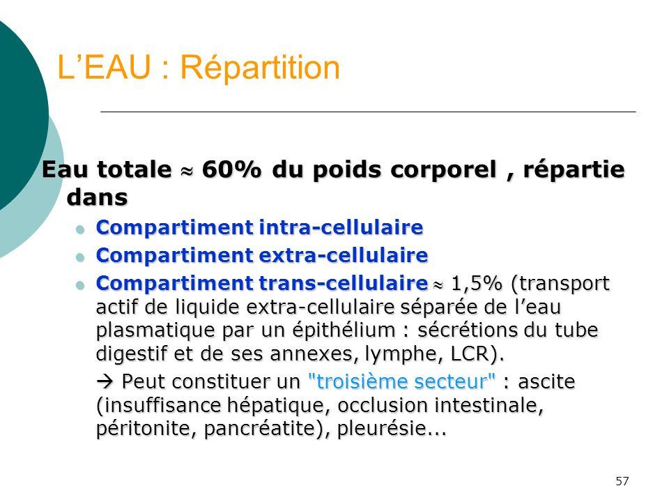 57 LEAU : Répartition Eau totale 60% du poids corporel, répartie dans Compartiment intra-cellulaire Compartiment intra-cellulaire Compartiment extra-c