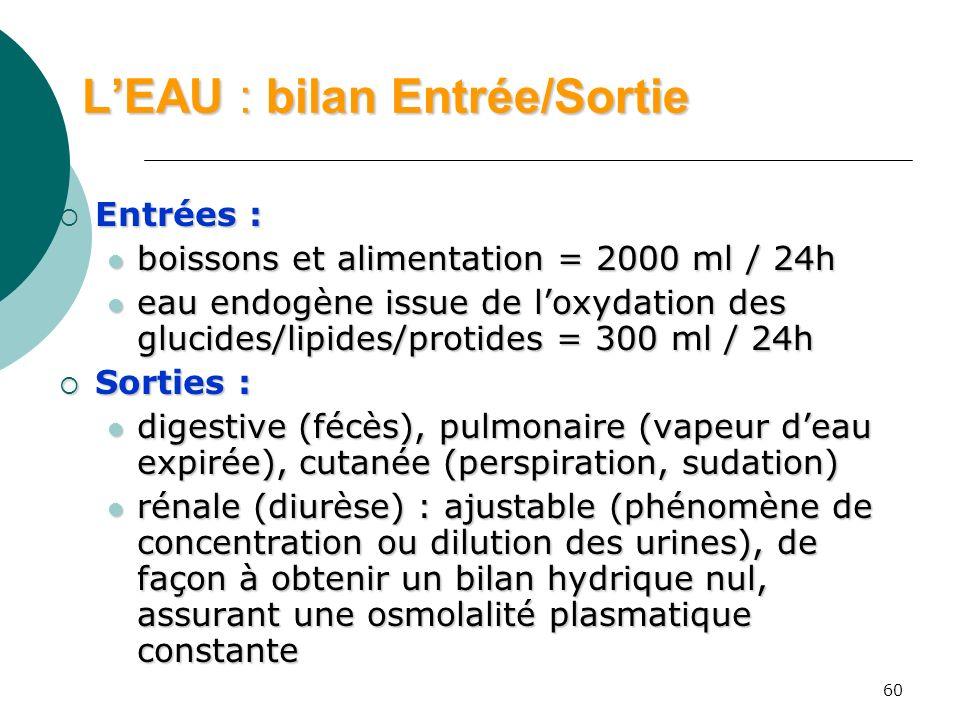 60 LEAU : bilan Entrée/Sortie Entrées : Entrées : boissons et alimentation = 2000 ml / 24h boissons et alimentation = 2000 ml / 24h eau endogène issue