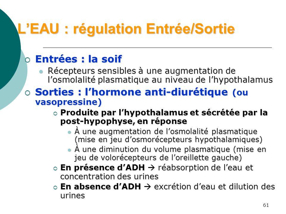 61 LEAU : régulation Entrée/Sortie Entrées : la soif Entrées : la soif Récepteurs sensibles à une augmentation de losmolalité plasmatique au niveau de