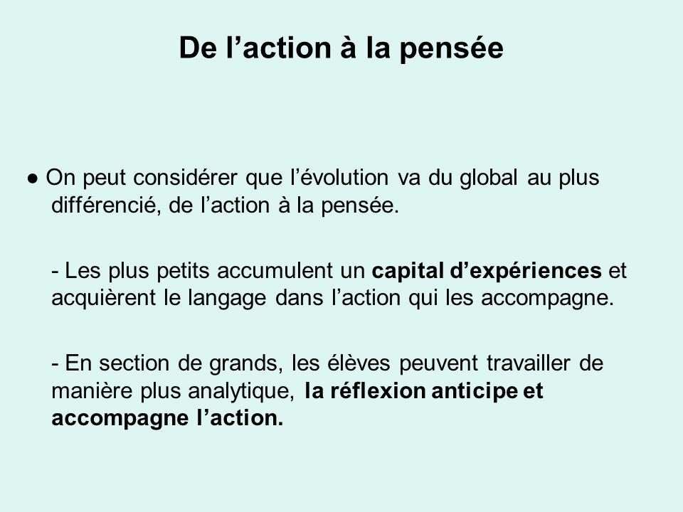 De laction à la pensée On peut considérer que lévolution va du global au plus différencié, de laction à la pensée. - Les plus petits accumulent un cap