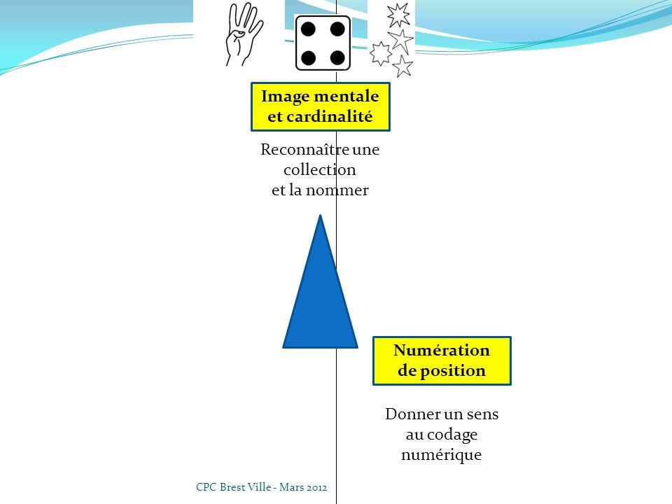 CPC Brest Ville - Mars 2012 Donner un sens au codage numérique Numération de position Reconnaître une collection et la nommer Image mentale et cardinalité Codage et décodage Savoir écrire et nommer des nombres