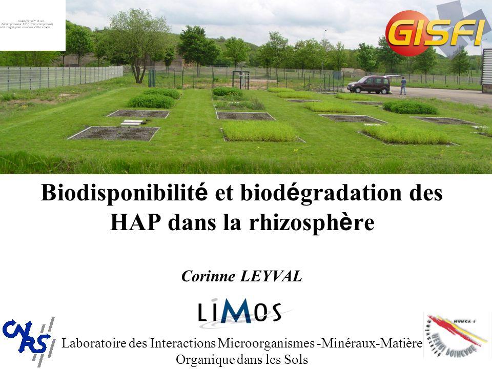 -Milliers dhectares de friches (plus de 6 000 ha en Lorraine) -Multipollution organique (HAP) et métallique (ETM) -Les techniques de traitement (désorption thermique) réduisent mais néliminent pas complètement pas la pollution (ETM) -La présence de plante (rhizosphère) augmente la dissipation des HAP dans la rhizosphère, mais peu détudes in situ -Nécessité de prendre en compte lensemble des polluants présents, leur toxicité et leur biodisponibilité Contexte