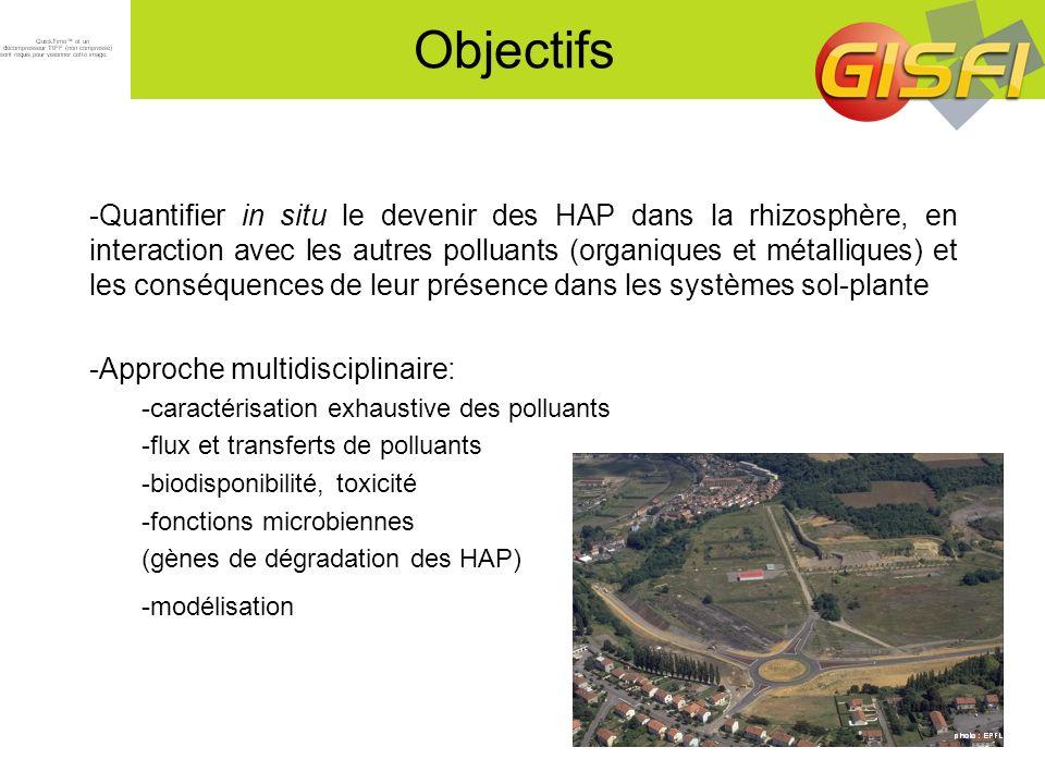 Nombre de copies de gène/ g de sol sec Terre NueVégétation spontanéeMedicago sativa 10 9 10 8 10 7 10 6 10 5 10 4 t0t1t2t3t0t1t2t3t0t1t2t3t0t1t2t3 Sol NM brut Sol NM TD Quantification par PCR en temps réel du nombre de copies de gènes 16S (bactéries totales) et HAP-dioxygénase (bactéries capables de dégrader les HAP) Evolution de la communauté bactérienne totale et des bactéries dégradant les HAP