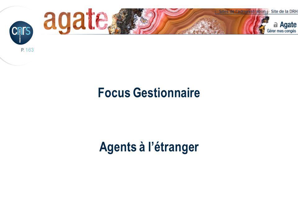 P. 163 Focus Gestionnaire Agents à létranger