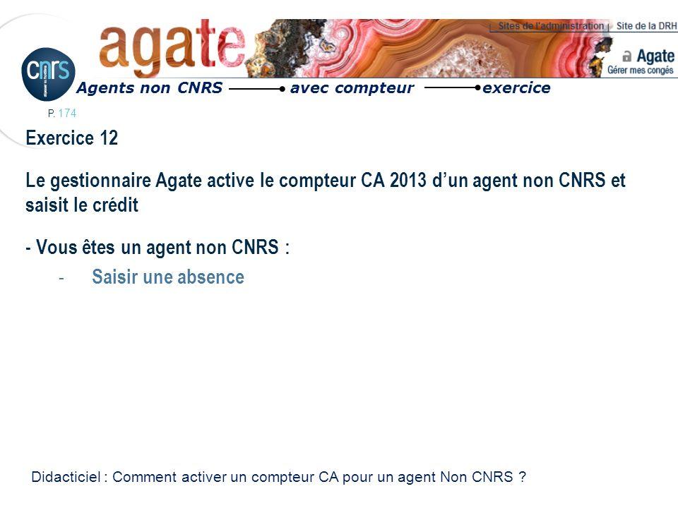 P. 174 Exercice 12 Le gestionnaire Agate active le compteur CA 2013 dun agent non CNRS et saisit le crédit - Vous êtes un agent non CNRS : - Saisir un